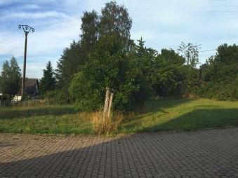fuerweiler-grundstueck-panorama